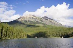 urocza alces panorama lake Zdjęcia Stock
