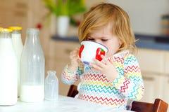 Urocza berbeć dziewczyna pije krowy mleko dla śniadaniowej Ślicznej dziecko córki z udziałami butelki Zdrowy dziecko ma obrazy stock