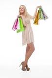 Urocza kobieta z torba na zakupy Fotografia Stock