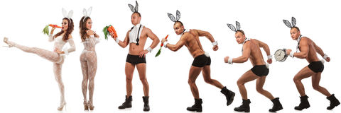 Urocza królik para Zdjęcie Royalty Free