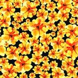 Urocza kwiecista bezszwowa deseniowa ilustracja żółty kwiat Obraz Stock