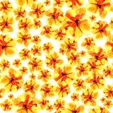 Urocza kwiecista bezszwowa deseniowa ilustracja żółty kwiat Zdjęcia Royalty Free