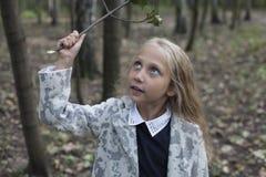Urocza mała dziewczynka bawić się w drewnie Obrazy Stock