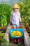 Urocza mała dziewczynka jest ubranym słomianego kapelusz bawić się z jej zabawkarskimi ogrodowymi narzędziami w szklarni Obrazy Stock
