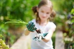 Urocza mała dziewczynka jest ubranym słomianego kapelusz bawić się z jej zabawkarskimi ogrodowymi narzędziami w szklarni Zdjęcie Royalty Free