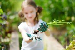 Urocza mała dziewczynka jest ubranym słomianego kapelusz bawić się z jej zabawkarskimi ogrodowymi narzędziami w szklarni Obraz Stock
