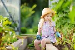 Urocza mała dziewczynka jest ubranym słomianego kapelusz i children ogrodowe rękawiczki bawić się z jej zabawkarskimi ogrodowymi  Fotografia Stock