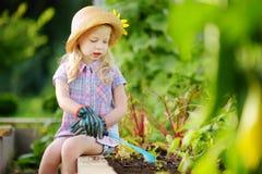 Urocza mała dziewczynka jest ubranym słomianego kapelusz i children ogrodowe rękawiczki bawić się z jej zabawkarskimi ogrodowymi  Obrazy Stock