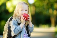 Urocza mała uczennica studiuje outdoors na jaskrawym jesień dniu Młody uczeń robi jej pracie domowej Edukacja dla małych dzieciak Fotografia Stock