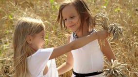 Urocze dziewczyny dbają przyjaciela o przyjacielu Jasnogłowe dziewczyny chodzą przez pole banatka Dziewczyny zbierają ucho zbiory