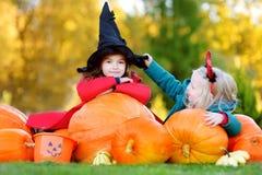 Urocze małe dziewczynki jest ubranym Halloween kostium ma zabawę na dyniowej łacie Fotografia Royalty Free