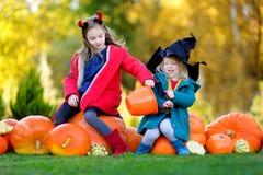 Urocze małe dziewczynki jest ubranym Halloween kostium ma zabawę na dyniowej łacie Obraz Royalty Free