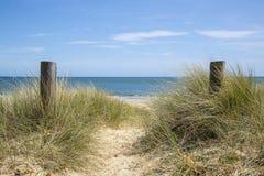 Urocze piasek diuny i plaża krajobraz na pogodnym letnim dniu Zdjęcie Royalty Free