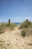 Urocze piasek diuny i plaża krajobraz na pogodnym letnim dniu Obraz Stock