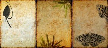 urocze tło tekstury trzy Obrazy Stock
