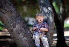 uroczej chłopiec mały parkowy siedzący drzewo Zdjęcia Royalty Free