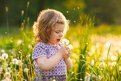 Uroczy śliczny mały dziewczynki dmuchanie na dandelion kwiacie na naturze w lecie Szcz??liwy zdrowy pi?kny obraz stock