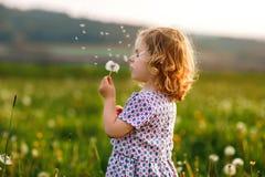 Uroczy śliczny mały dziewczynki dmuchanie na dandelion kwiacie na naturze w lecie Szcz??liwy zdrowy pi?kny obrazy royalty free