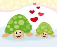 uroczy żółwie Zdjęcie Royalty Free