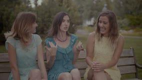 Uroczy żeńscy przyjaciele plotkuje na ławce zbiory