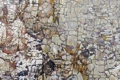 Uroczy abstrakcjonistyczny obraz laka obraz, adobe rgb obrazy stock