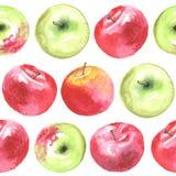 Uroczy autunm jabłka wzór Zdjęcia Stock