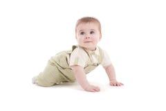 uroczy dziecka błękit puszka oczy target1077_1_ portret Fotografia Royalty Free