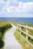 Uroczy faleza spacer na dzikim atlantyckim sposobie Zdjęcie Royalty Free