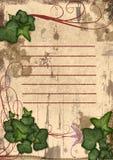 uroczy gałęziasty ramowy bluszcz Obrazy Royalty Free