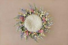 Uroczy kwiatu tło dla nowonarodzonego dziecka, pojęcie nowonarodzeni półdupki obraz stock