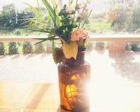 Uroczy kwiaty Zdjęcia Royalty Free