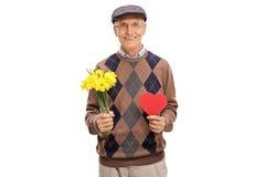 Uroczy starego człowieka mienia tulipany i serce Obraz Stock