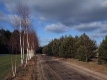 Uroczy widok rzeka, drzewa, las i pola na backgr, Obraz Royalty Free
