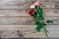 Uroczy wzrastał kwiaty Obraz Stock
