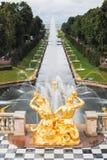 Uroczysta Kaskadowa fontanna w Peterhof Zdjęcia Royalty Free