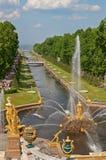 Uroczyste Kaskadowe fontanny Peterhof Zdjęcia Royalty Free