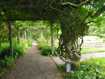 uroczyste ogród Obrazy Royalty Free