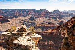 Uroczystego jaru park narodowy Obraz Royalty Free