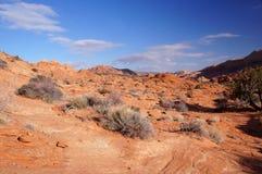 Uroczysty Escalante Krajowy zabytek, Utah, usa Obraz Stock