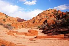 Uroczysty Escalante Krajowy zabytek, Utah, usa Fotografia Stock