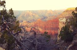 Uroczysty jar, Arizona krajobraz Fotografia Stock