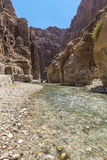 Uroczysty jar Jordania, wadiego al mujib Naturalna rezerwa Zdjęcie Stock