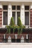 Uroczysty okno obraz royalty free