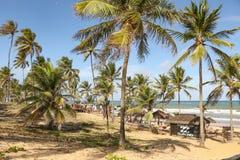 Uroczysty pallad plaży bar obraz royalty free