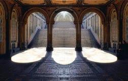 Uroczysty schody przy central park Fotografia Royalty Free
