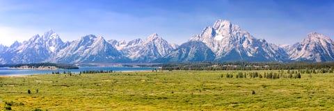 Uroczysty Teton park narodowy, pasmo górskie panorama, Wyoming usa obrazy royalty free