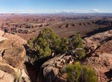 Uroczysty widoku punkt Overllook od Canyonlands parka narodowego Utah, zdjęcia stock