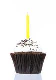 Urodzinowa babeczka z świeczką odizolowywa Obraz Stock