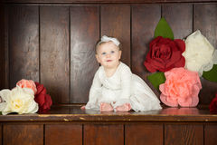 Urodzinowi dziewczyna portrety Obraz Royalty Free