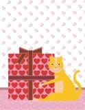 Urodzinowy kot Zdjęcie Stock